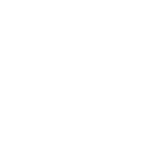 Energetic arrows point upward above software development team